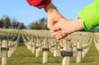 children walk hand in hand for peace world war 1 - 75494315