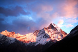 Holy mount Machapuchare (Fishtail) at sunrise, Nepal poster