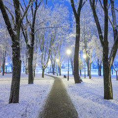 Footpath in a fabulous winter city park