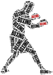 Boxer or boxing fighter.