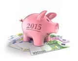 """Sparschwein """"2015"""" auf Euroscheinen"""