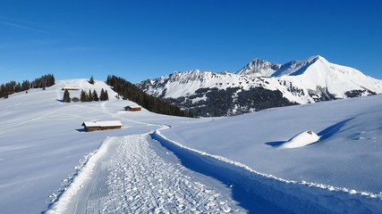 Winter landscape near Gstaad, view of Lauenenhorn and Gifer