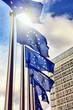 European Union flags - 75513321