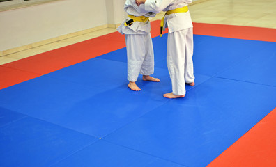 judo athletes in battle on the ground