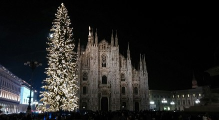 Duomo di Milano di notte con albero di Natale