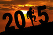 Silhouette of man expressing success with number 2015