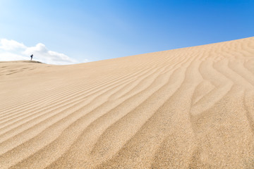 Canary islands, Maspalomas. Spain. Sand dunes.
