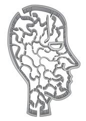 Creative maze face