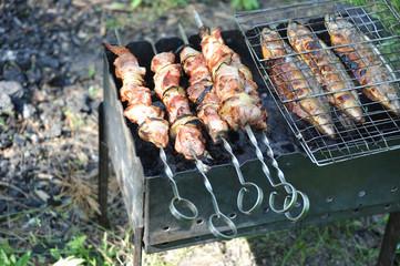 Grilled shish kebab and fish on chargrill