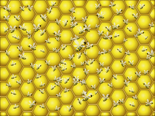 Hive and honey background
