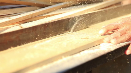 Carpenter use circular table electric saw cutting wood