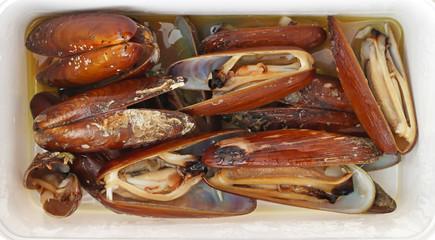 Date shells