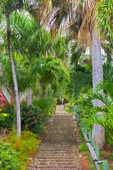 The 99 steps in Charlotte Amalie, St Thomas, US VI.