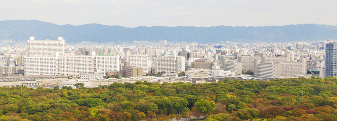 Panoramic view of Osaka city, Japan