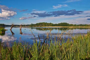 Naturparadies Stuerscher See bei Stuer, Mecklenburg-Vorpommern,