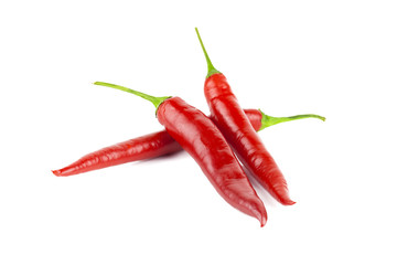 Red hot chili on white background