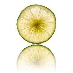 lime slice isolated on white background back lighted