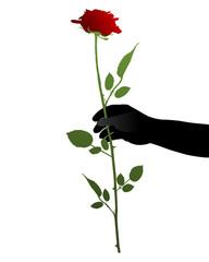 Hand mit Rose