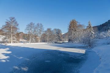 étang gelé des Vosges