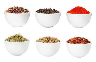 Spices in bowls set