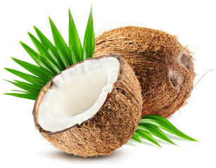 coconut and leaf isolated on white background