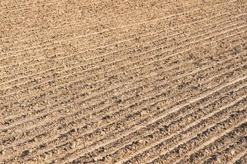 Ackerboden, Landwirtschaft, Bodenbearbeitung