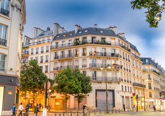 Ancient buildings of Paris, France