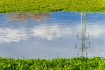 Spiegelung im Regenwasser auf der Wiese