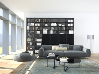 modern couch and wood bookcase in a living room. 3d rendering