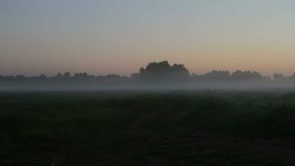 haze, morning