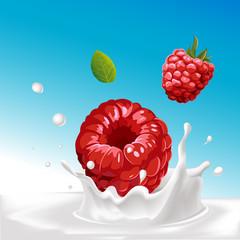 vector splash of milk with raspberry - illustration