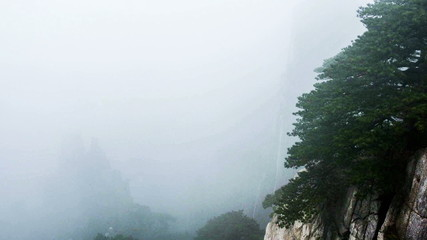 The fog and cloud in Yellow Mountain, China