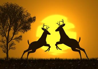 Berrea, lucha ritual de ciervos al atardecer, ilustración