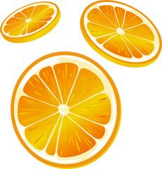orange slice illustration - isolated on white background