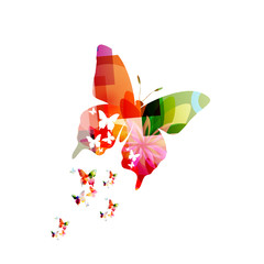 Colorful vector butterfly design