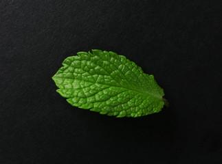 Mint leaf on black background