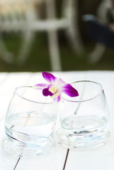 Orchid on Glass water nature palce