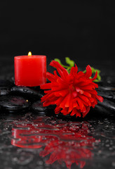 Spa still life with red candle with red ranunculus