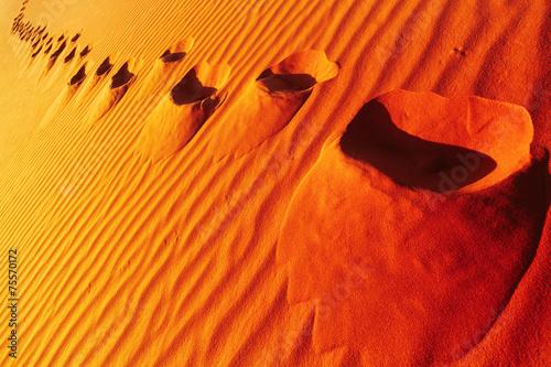 Tuinposter Algerije Footprints on sand dune
