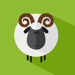 Cute Ram Sheep.Modern Flat Design Illustration variant 1