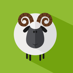 Cute Ram Sheep.Modern Flat Design Illustration variant 1