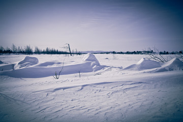 Winter landscape at Lake Baikal. Toned