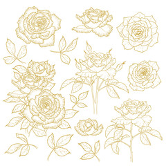 Set of one-colored outlined roses
