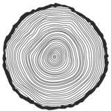 Vector conceptual background with tree-rings.