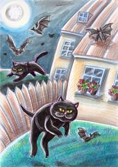 Black Stray Cats Chasing Bats