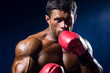 Strong muscular boxer in red boxing gloves on a blue background