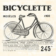Bicycle for Girl - 75581304