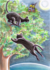 Black Stray Cats And An Owl On A Tree