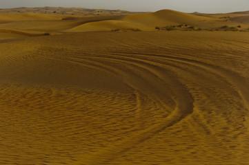 Dubai, deserto 6