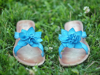 Summer shoes on the grass.